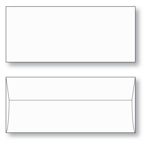 Ticket Envelope Ticket Master style unprinted