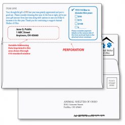 #9 Action Reply Envelope