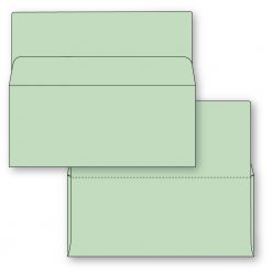 #9 Bangtail Bank-by-mail envelope in green stock